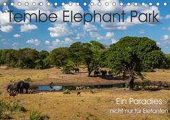 Tembe Elephant Park. Ein Paradies – nicht nur für Elefanten (Tischkalender 2020 DIN A5 quer) von rsiemer