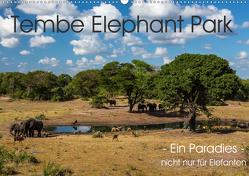 Tembe Elephant Park. Ein Paradies – nicht nur für Elefanten (Wandkalender 2020 DIN A2 quer) von rsiemer