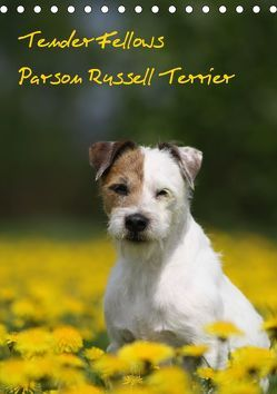 Tender Fellows – Parson Russell Terrier (Tischkalender 2019 DIN A5 hoch) von Clüver,  Maike