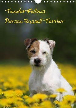 Tender Fellows – Parson Russell Terrier (Wandkalender 2018 DIN A4 hoch) von Clüver,  Maike