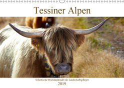 Tessiner Alpen – Lust auf NaTour (Wandkalender 2019 DIN A3 quer) von Riedmiller,  Andreas
