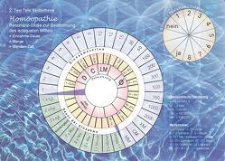 Testtafel 2 + 2.1: Homöopathie und Schüsslersalze von Kraus,  Andrea,  Constanze