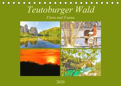 Teutoburger Wald – Flora und Fauna (Tischkalender 2020 DIN A5 quer) von Hackstein,  Bettina
