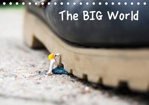 the BIG World (Tischkalender 2020 DIN A5 quer) von Rochow,  Holger