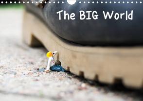 the BIG World (Wandkalender 2020 DIN A4 quer) von Rochow,  Holger