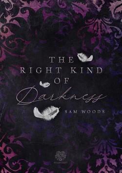 The right kind of Darkness von Woods,  Sam