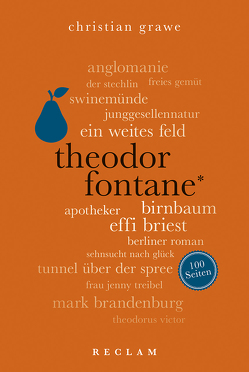 Theodor Fontane. 100 Seiten von Grawe,  Christian