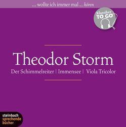 Theodor Storm – Drei ausgewählte Novellen von Büttner,  Wolfgang, Kilian,  Heinz, Storm,  Theodor