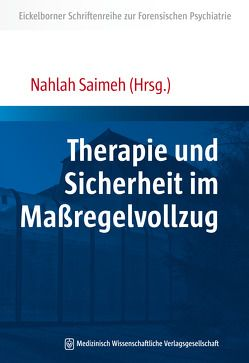 Therapie und Sicherheit im Maßregelvollzug von Saimeh,  Nahlah