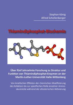 Thiamindiphosphat-Biochemie von König,  Stephan, Schellenberger,  Alfred