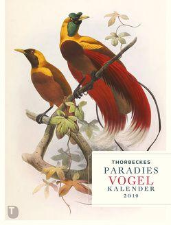Thorbeckes Paradiesvogel Kalender 2019 von Hauschild,  Stephanie
