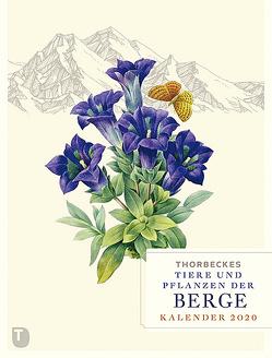 Thorbeckes Tiere und Pflanzen der Berge Kalender 2020
