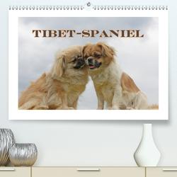 Tibet-Spaniel (Premium, hochwertiger DIN A2 Wandkalender 2021, Kunstdruck in Hochglanz) von Lindert-Rottke,  Antje