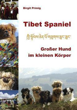 Tibet Spaniel von Primig,  Birgit