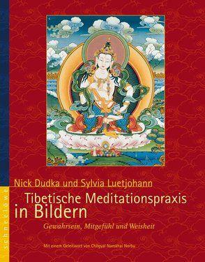 Tibetische Meditationspraxis in Bildern von Dudka,  Nick