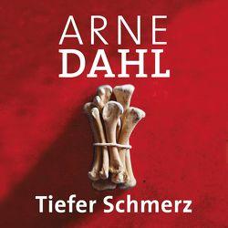 Tiefer Schmerz (A-Team 4) von Butt,  Wolfgang, Dahl,  Arne, Holdorf,  Jürgen