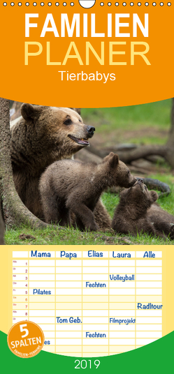 Tierbabys 2019 – Familienplaner hoch (Wandkalender 2019 , 21 cm x 45 cm, hoch) von Schörkhuber,  Johann