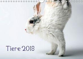 Tiere 2018 (Wandkalender 2018 DIN A4 quer) von Zwanzger,  Wolfgang
