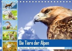 Tiere der Alpen: Steinbock, Gams und Murmeltier (Tischkalender 2018 DIN A5 quer) von CALVENDO,  k.A.