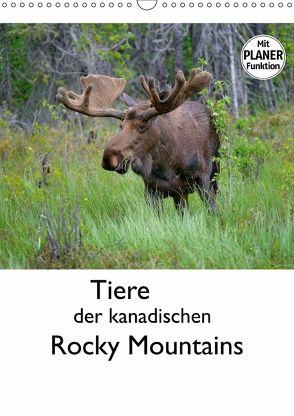 Tiere der kanadischen Rocky Mountains (Wandkalender 2018 DIN A3 hoch) von Wilczek,  Dieter-M.