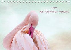 Tiere des Chemnitzer Tierparks (Tischkalender 2019 DIN A5 quer) von Hultsch,  Heike