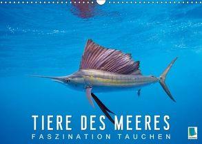 Tiere des Meeres: Faszination Tauchen (Wandkalender 2018 DIN A3 quer) von CALVENDO,  k.A.
