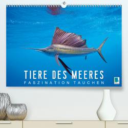 Tiere des Meeres: Faszination Tauchen (Premium, hochwertiger DIN A2 Wandkalender 2020, Kunstdruck in Hochglanz) von CALVENDO