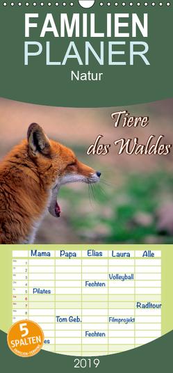 Tiere des Waldes – Familienplaner hoch (Wandkalender 2019 , 21 cm x 45 cm, hoch) von Geduldig,  Bildagentur