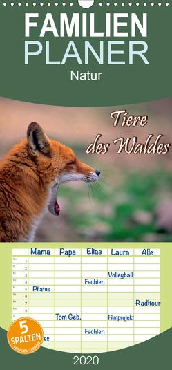Tiere des Waldes – Familienplaner hoch (Wandkalender 2020 , 21 cm x 45 cm, hoch) von Geduldig,  Bildagentur