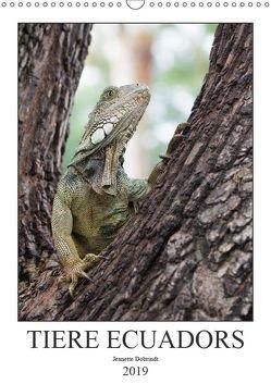 Tiere Ecuadors (Wandkalender 2019 DIN A3 hoch) von Dobrindt,  Jeanette