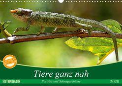 Tiere ganz nah – Porträts und Schnappschüsse (Wandkalender 2020 DIN A3 quer) von Gärtner,  Oliver