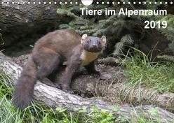 Tiere im Alpenraum (Wandkalender 2019 DIN A4 quer) von Christian Widdmann,  Uwe