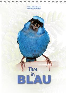 Tiere in Blau (Tischkalender 2021 DIN A5 hoch) von Schmidbauer,  Heinz
