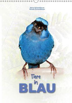 Tiere in Blau (Wandkalender 2019 DIN A3 hoch) von Schmidbauer,  Heinz