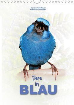 Tiere in Blau (Wandkalender 2020 DIN A4 hoch) von Schmidbauer,  Heinz