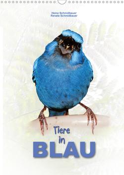Tiere in Blau (Wandkalender 2021 DIN A3 hoch) von Schmidbauer,  Heinz