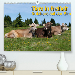Tiere in Freiheit – Nutztiere auf der Alm (Premium, hochwertiger DIN A2 Wandkalender 2021, Kunstdruck in Hochglanz) von Niederkofler,  Georg