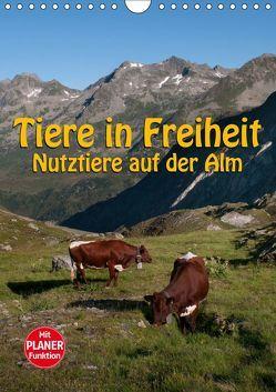 Tiere in Freiheit – Nutztiere auf der Alm (Wandkalender 2019 DIN A4 hoch) von Niederkofler,  Georg