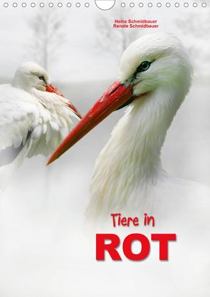 Tiere in ROT (Wandkalender 2021 DIN A4 hoch) von Schmidbauer,  Heinz