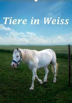 Tiere in Weiß (Wandkalender 2018 DIN A2 hoch) von Brunner-Klaus,  Liselotte