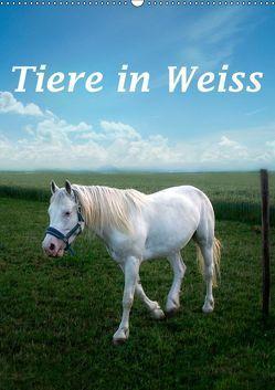 Tiere in Weiß (Wandkalender 2019 DIN A2 hoch)