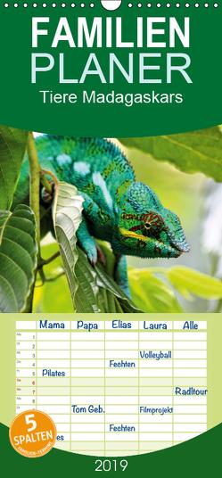 Tiere Madagaskars – Familienplaner hoch (Wandkalender 2019 , 21 cm x 45 cm, hoch) von Baur,  Céline