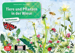 Tiere und Pflanzen in der Wiese. Kamishibai Bildkartenset. von Klars,  Monika, Stöckl-Bauer,  Katharina