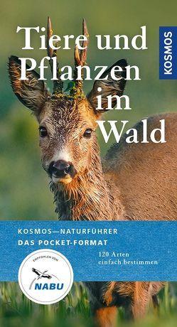 Tiere und Pflanzen im Wald von Wilhelmsen,  Ute
