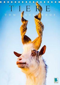 Tiere vom Bauernhof (Tischkalender 2019 DIN A5 hoch) von CALVENDO