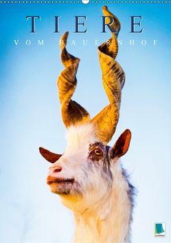 Tiere vom Bauernhof (Wandkalender 2018 DIN A2 hoch) von CALVENDO,  k.A.