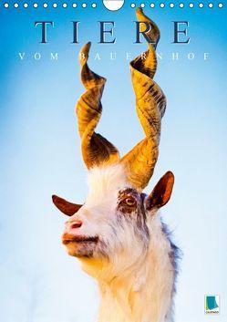 Tiere vom Bauernhof (Wandkalender 2018 DIN A4 hoch) von CALVENDO,  k.A.