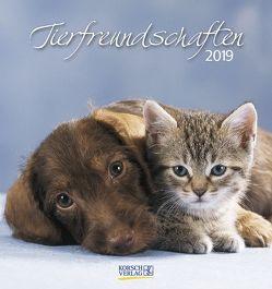 Tierfreundschaften 2019 von Korsch Verlag