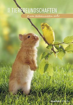 Tierfreundschaften 2020 – Animal Friendships – Bildkalender (24 x 34) – Tierkalender – mit lustigen Sprüchen – Wandkalender von ALPHA EDITION