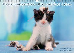 Tierfreundschaften – Freunde fürs Leben (Wandkalender 2018 DIN A3 quer) von Steimer,  Christine
